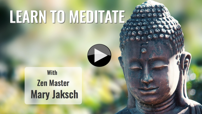Learn to meditate vid image.002-001