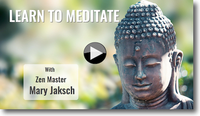 learn to meditate vid shadow