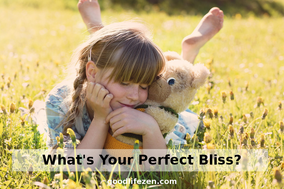 Bliss - Girl in field with teddy bear